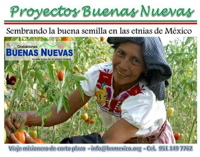 Proyectos BN